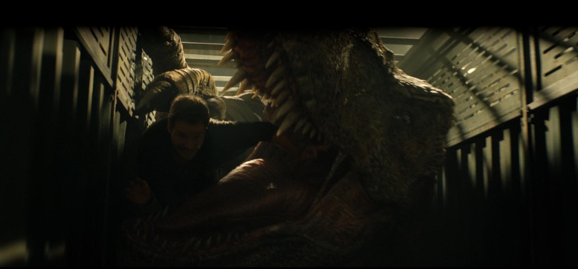 banner_rex1